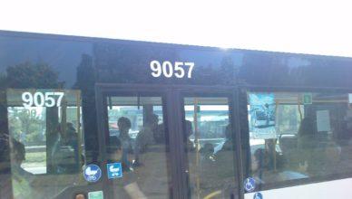 софия, автобус номер 204 на карат с