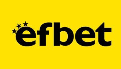 Информация за Ефбет